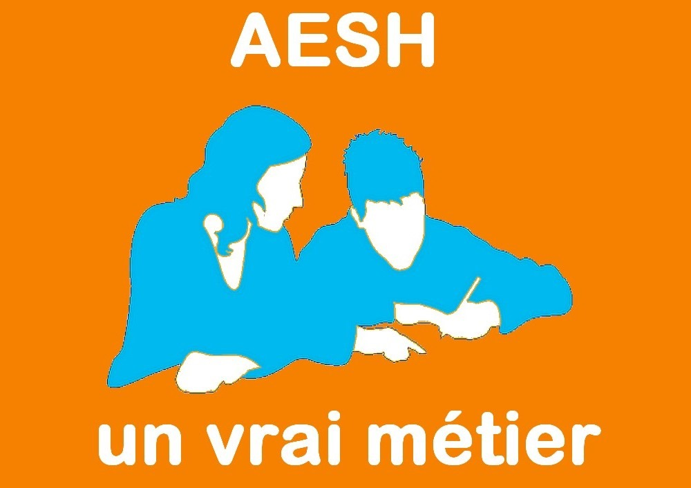 AESH : le SGEN reçu en audience par le ministère